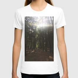 Magic Hour. Rushmere Country Park, Bedfordshire UK T-shirt