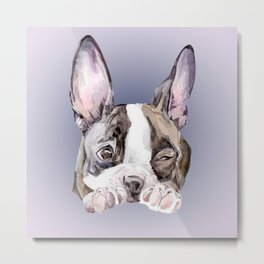 Boston Terrier Dog Watercolor Painting Metal Print