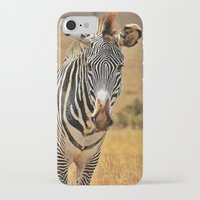 zebra iPhone & iPod Cases featuring Zebra by minx267