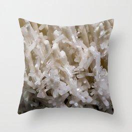 Botanical Gardens II - Crystals #941 Throw Pillow