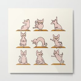 Sphynx Cat Yoga Metal Print