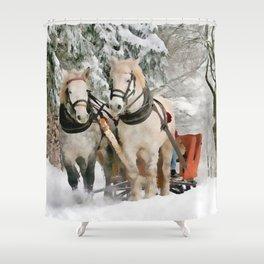 Winter Sleigh Ride Shower Curtain