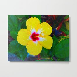 Rain Kissed Yellow Hibiscus Metal Print