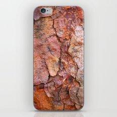 Arboretum Bark iPhone & iPod Skin
