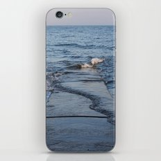 Across The Pier iPhone & iPod Skin