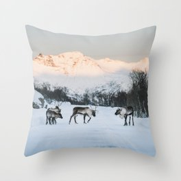 Roadblock - Landscape and Nature Photography Throw Pillow