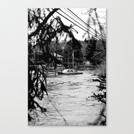 flood Canvas Print