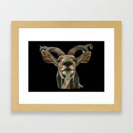 Greater African Kudu Painting Framed Art Print