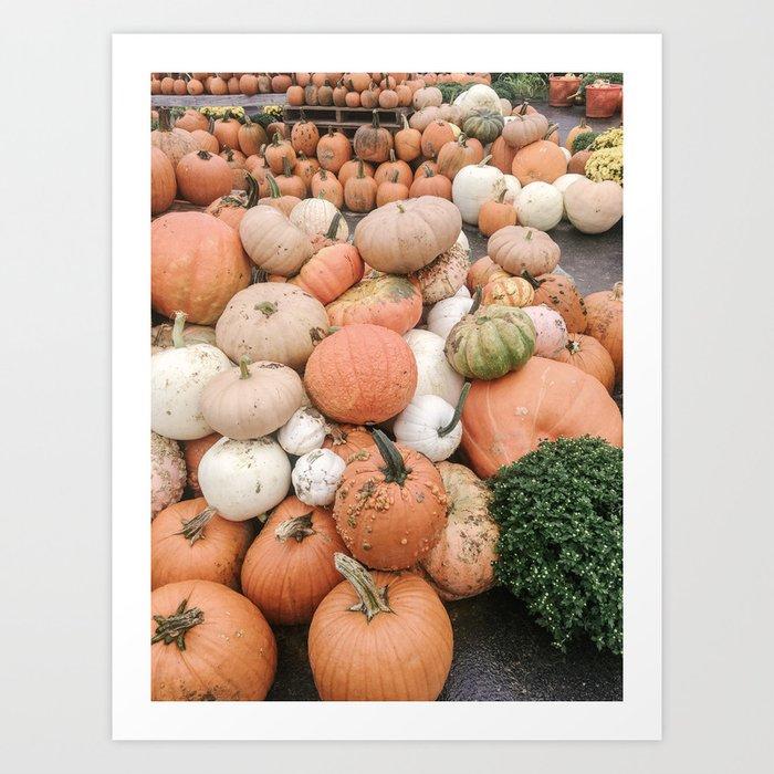 Modern Pumpkin Patch Art Print