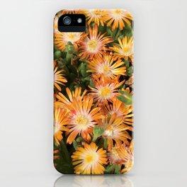 "Orange Delosperma, ""Ice Plant"" iPhone Case"