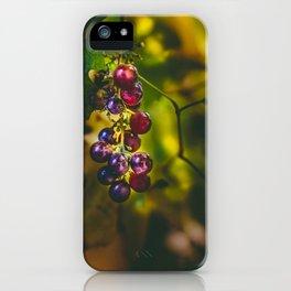 Pinot II iPhone Case