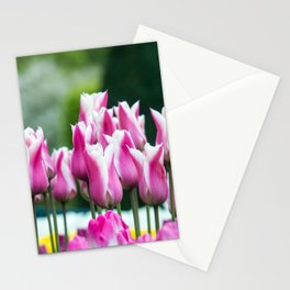 Tulips at the Keukenhof Stationery Cards