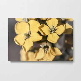 Bunched Together Metal Print