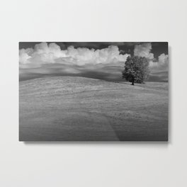 Lone Tree on Rolling Hill of Grass Metal Print