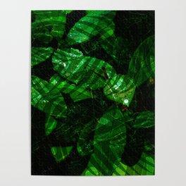 Leaves V1WL Poster
