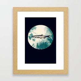 Lodestar (Capelin) Framed Art Print