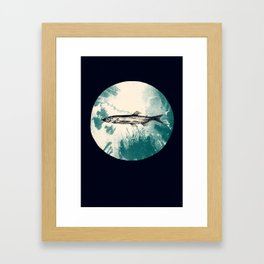 Lodestar (Capelin) Framed Art Print