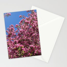 Spring blossoms pink Stationery Cards