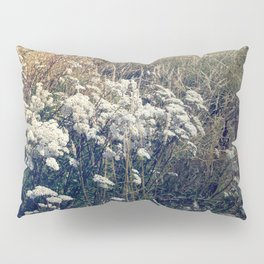 Rustic Field of Vintage Country Daisies Pillow Sham
