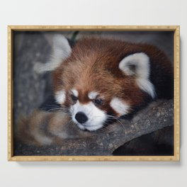 The Red Panda Serving Tray