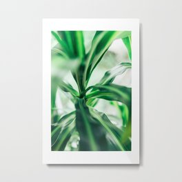 Greenery in Fuji Blue Metal Print