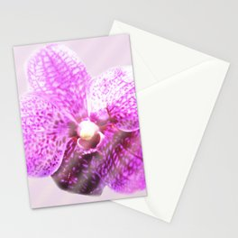 Amber Stationery Cards