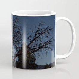 Moon brings life to an old tree Coffee Mug