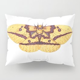 Imperial Moth (Eacles imperialis) Pillow Sham