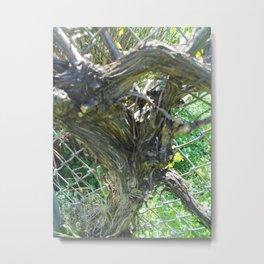 Chainlink Tree Metal Print