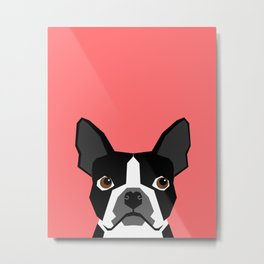 Kennedy - Boston Terrier cute dog themed gifts for small dog owners and Boston Terrier gifts  Metal Print