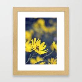 Little Skipper Butterfly Framed Art Print