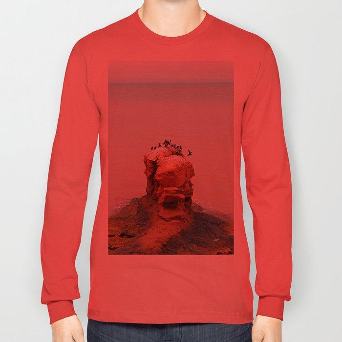 Cormorants on Red Sandstone Rock Long Sleeve T-shirt