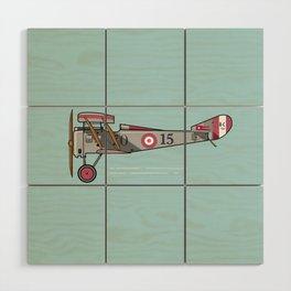 Biplane Wood Wall Art