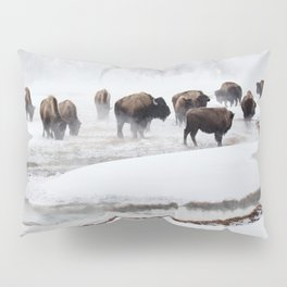 Yellowstone National Park - Bison Herd Pillow Sham