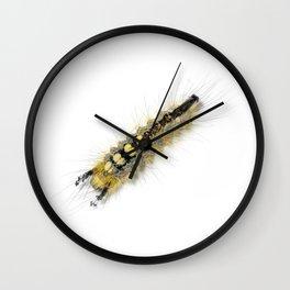 Rusty Tussock Moth Caterpillar Wall Clock