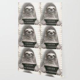 Sloth in a Mugshot Wallpaper