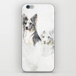 Collie dog iPhone Skin