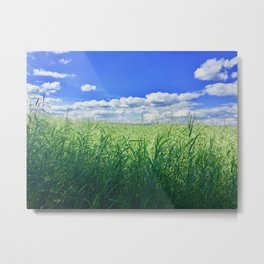 Relaxed Outlook Photography Metal Print