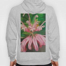 Australia flower Hoody