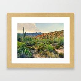 Muir Mountains Framed Art Print