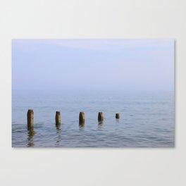 Five Stumps Canvas Print