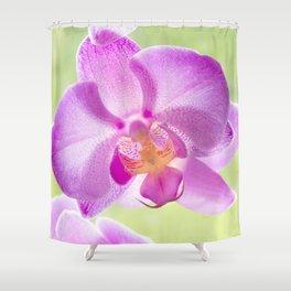 Backlit Iris Shower Curtain
