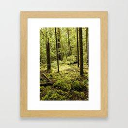 A Mystery in Green Framed Art Print