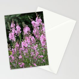 Prairie Mallow Stationery Cards