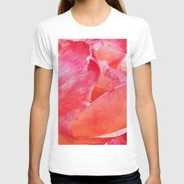 Rosebud Pink 615 T-shirt