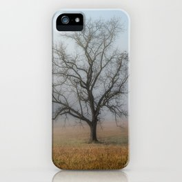 In a Fog - Single Tree on Foggy Morning in the Great Smoky Mountains iPhone Case