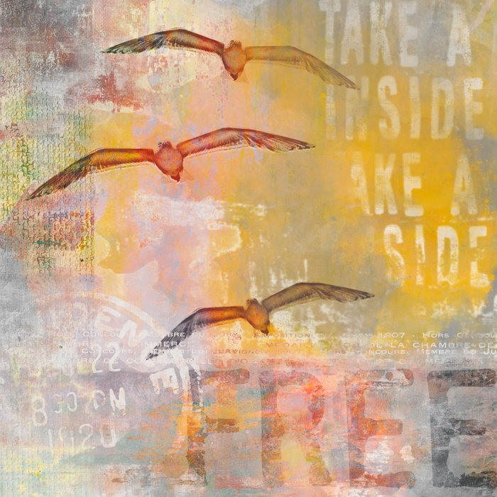 Free bird mixed media artwork Sea Gulls and Typography Comforters