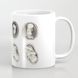 Foetal development Coffee Mug