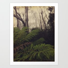 Rainforest No.11 Art Print