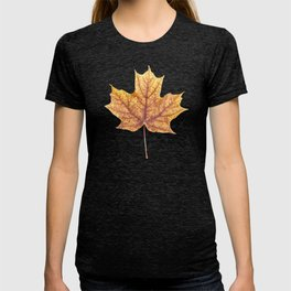 Gold Autumn Maple Leaf T-shirt